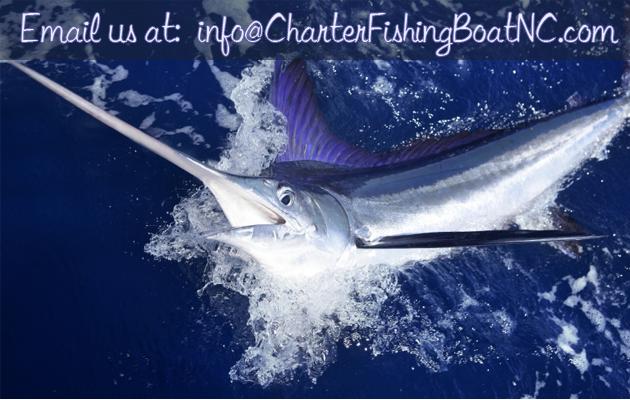 CHARTER-FISHING-CONTACT-1